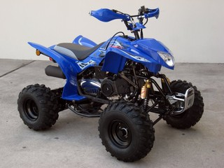 Race Pit Bikes 2008 Brand New Ssr 150cc Atv